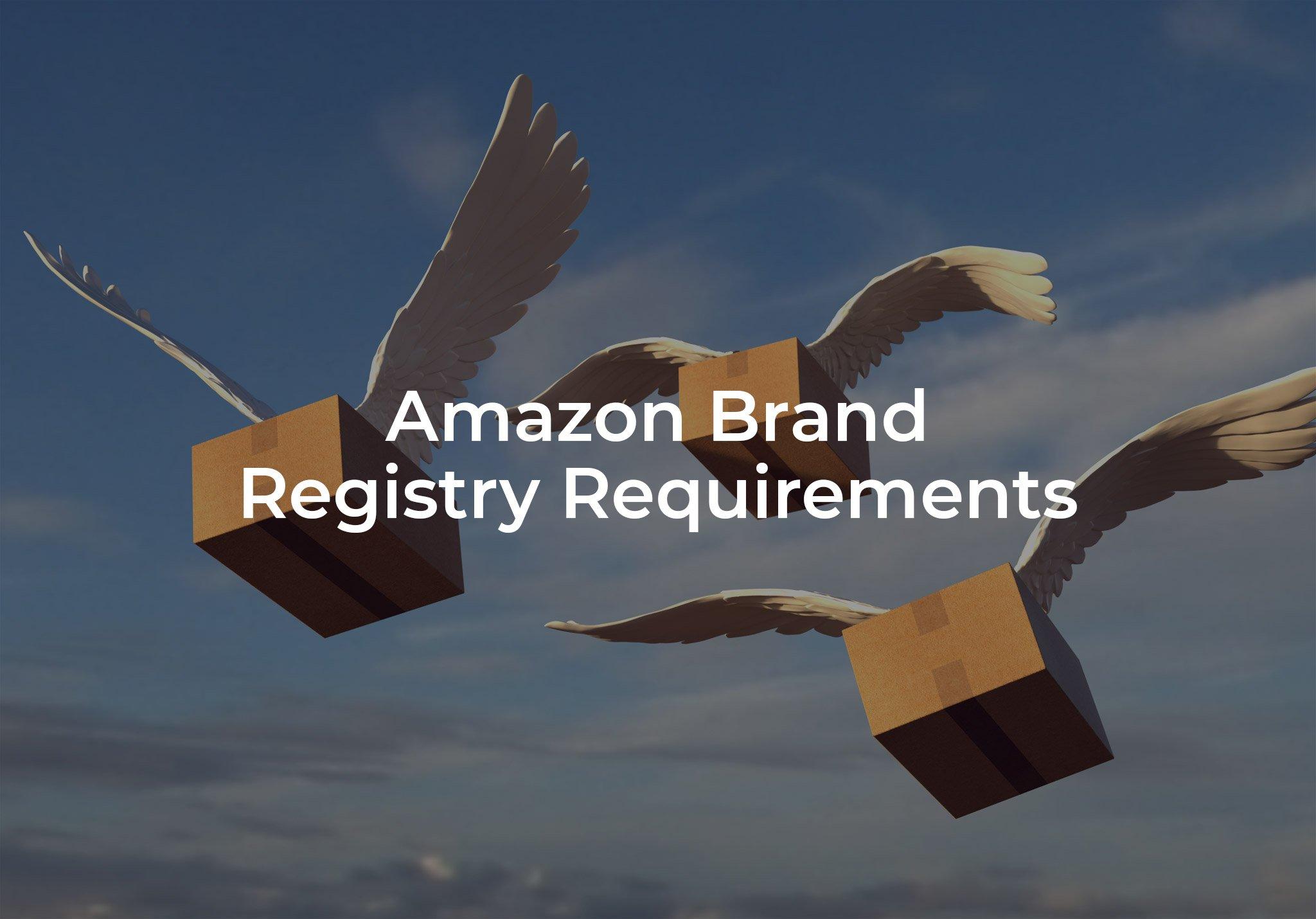 Amazon Brand Registry Requirements
